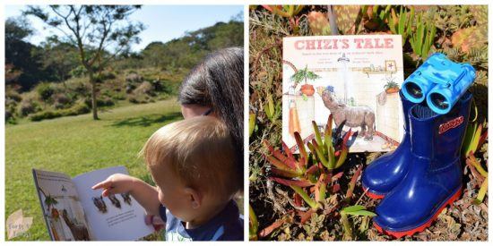 Chizi's Tale Book Review